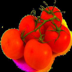 pomidor samo zdrowie poleca dietetyk