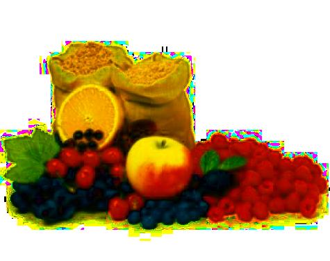 Dieta łatwo strawna z ograniczeniem produktów pobudzających wydzielanie soku żołądkowego